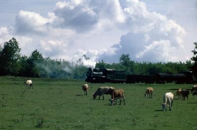 Кв4-039 на узкоколейной ж.д. около села Михайловка, Винницкая область