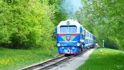 Состав 'Украина' на перегоне