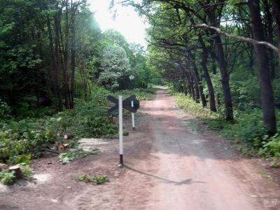 Грунтовая дорога, пересекавшая перегон до постройки трассы