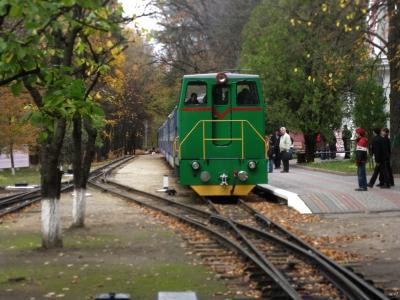ТУ7А с составом 'Украина' прибыл на ст. Парк